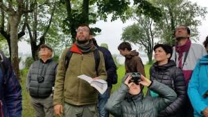 Birdwatching sul Lago Superiore di Mantova