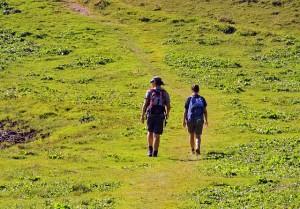 Cammino di Crescita / Per una partecipazione adulta agli scout