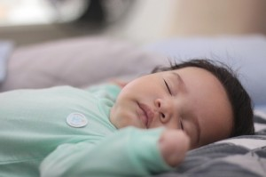 Alla scoperta del sonno