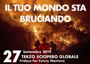 Fridays For Future Mantova: terzo Sciopero Mondiale per il Futuro