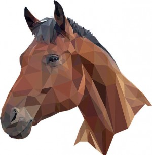 Storie a Cavallo
